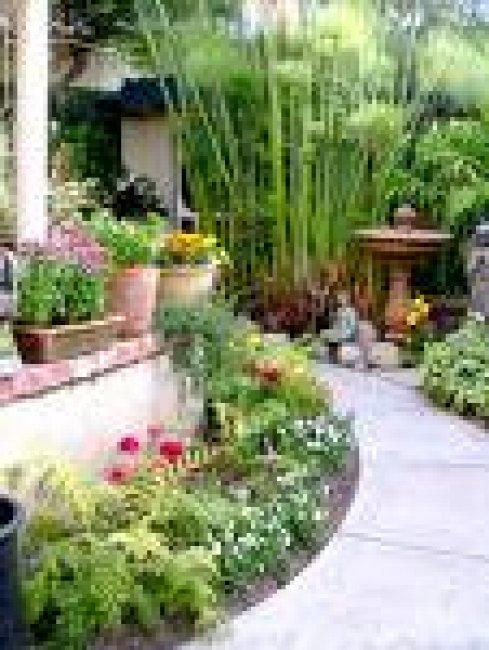 Bahçe düzeni
